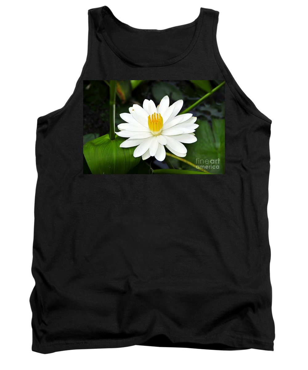White Tank Top featuring the photograph White Wonder by David Lee Thompson