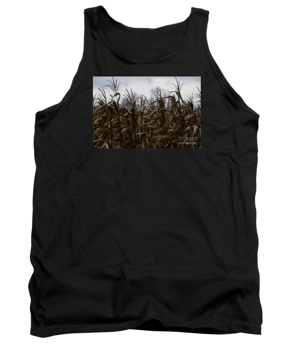 Corn Tank Top featuring the photograph Wind Blown by Linda Shafer