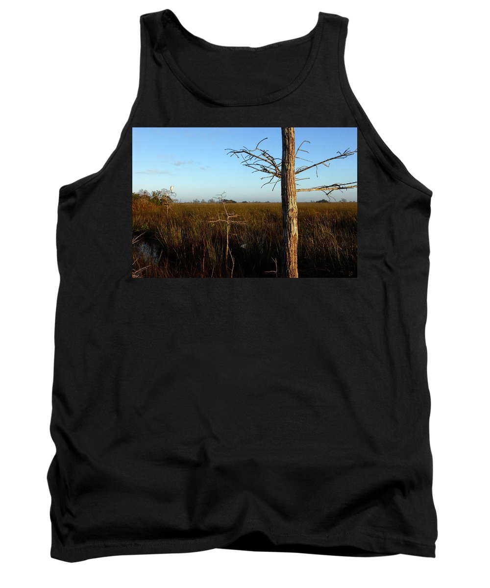 Cypress Trees Tank Top featuring the painting Winter Cypress by David Lee Thompson