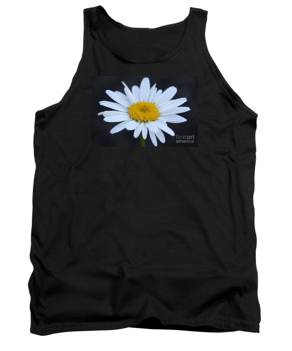 Daisy Tank Top featuring the photograph Winter Daisy by Amy Steeples