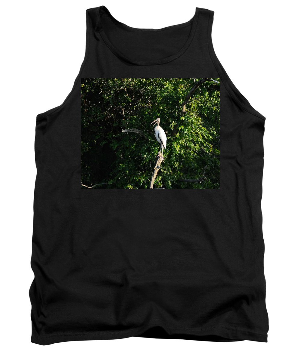 Wood Stork Tank Top featuring the photograph Wood Stork-out On A Limb by Al Powell Photography USA