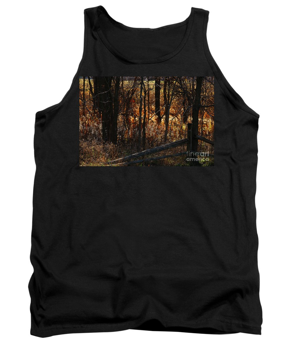 Michigan Tank Top featuring the photograph Woods - 1 by Linda Shafer