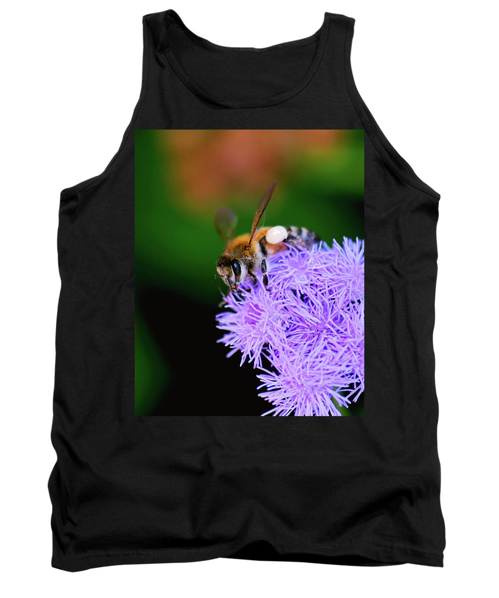 Honey Bee Tank Top featuring the photograph Worker Bee by Betty LaRue