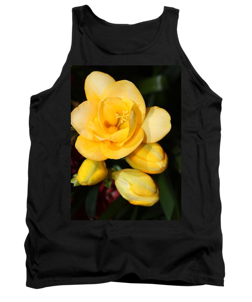 Easter Tank Top featuring the photograph Yellow Crocus Closeup by Carol Groenen