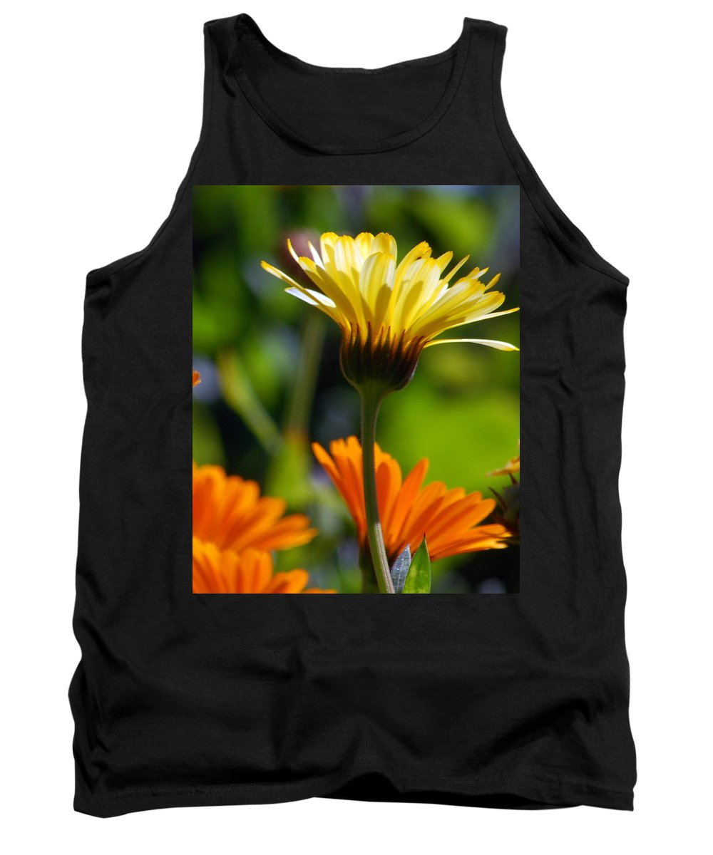 Daisy Tank Top featuring the photograph Yellow Daisy by Amy Fose