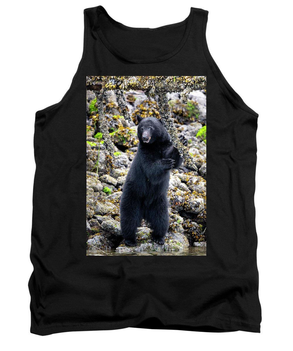 Black Bear Tank Top featuring the photograph Black Bear Standing by Dan Carr