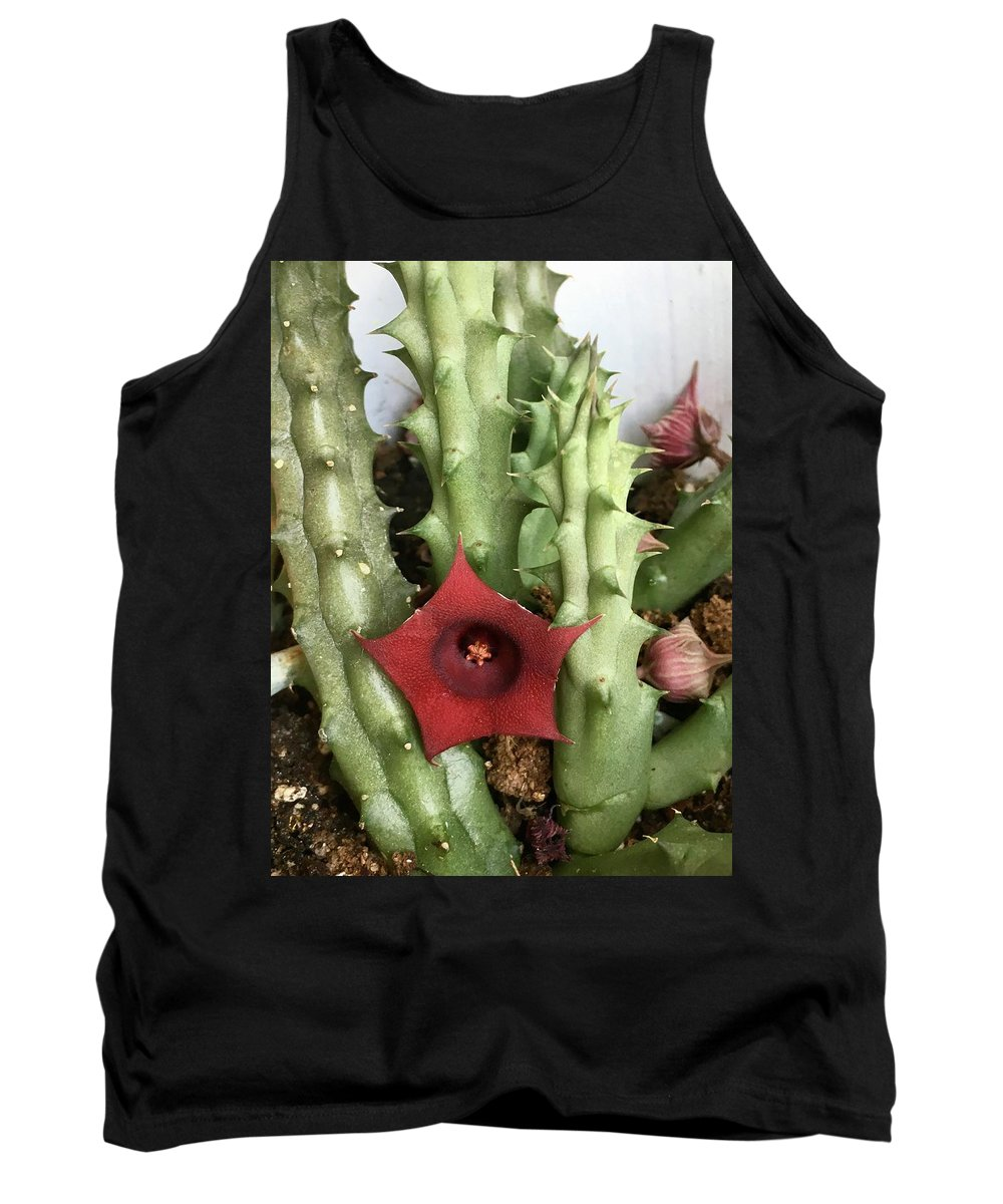 Cactus Blooming Flowers Plants Green Red Budding Flowering Tank Top featuring the photograph Blooming Cactus by Suzanne Udell Levinger