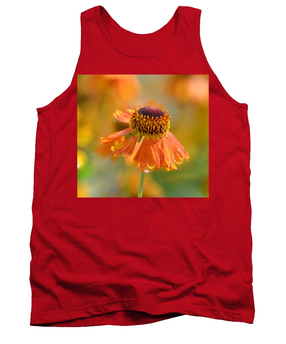 Autumn's Gold 2013 Tank Top featuring the photograph Autumn's Gold 2013 by Maria Urso