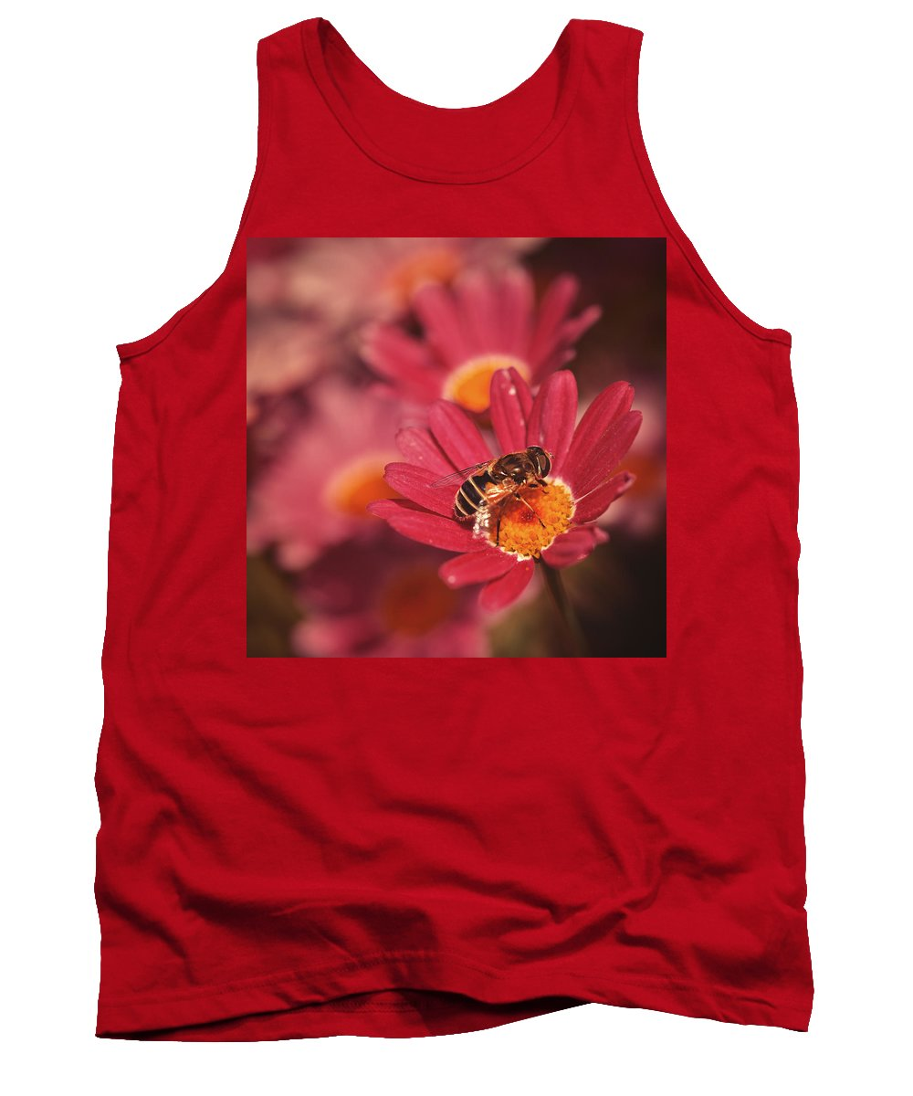 Flower Tank Top featuring the photograph Bee On A Pink Daisy by TouTouke A Y
