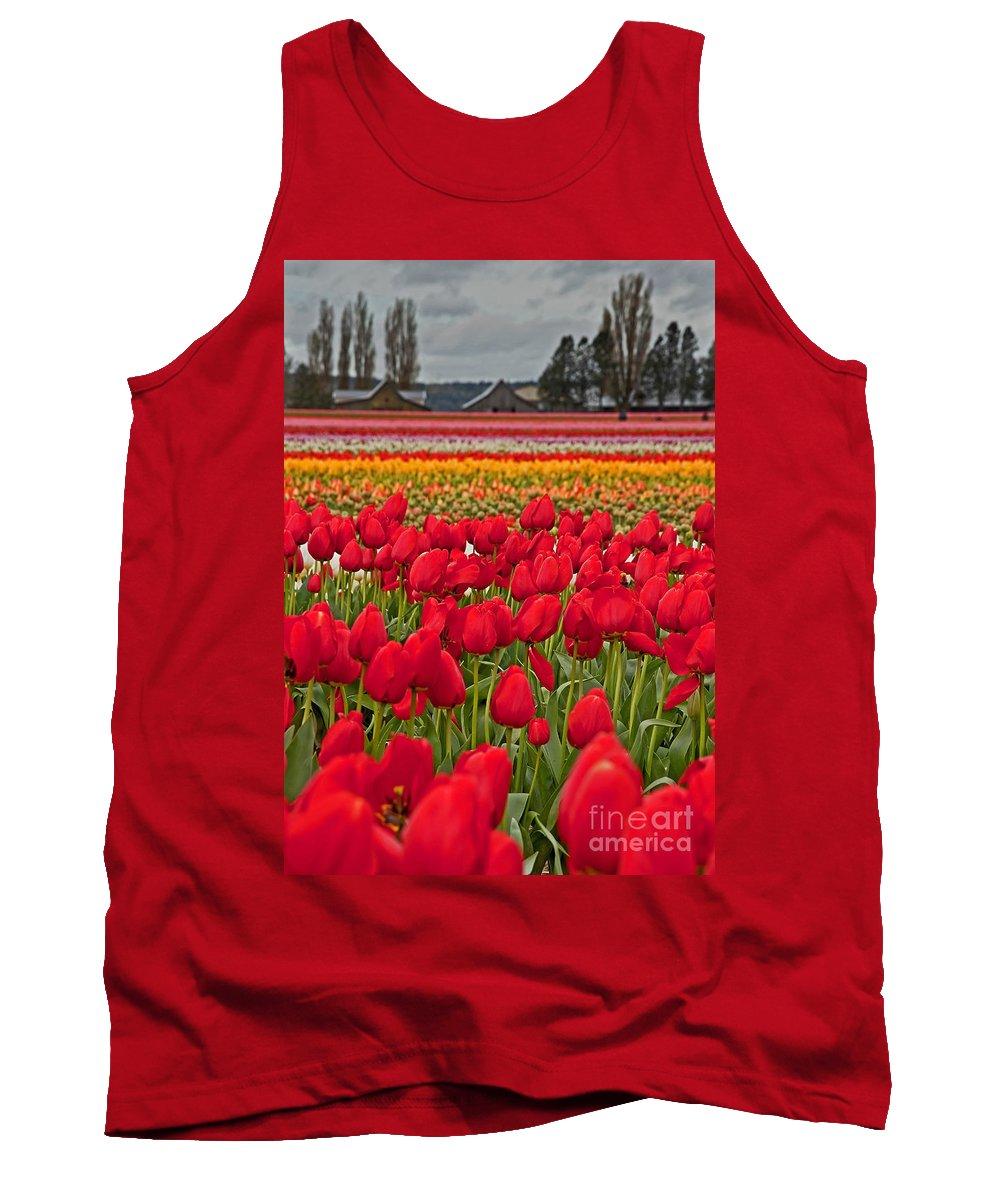 Tulip Fields Tank Top featuring the photograph Springtime Tulip Field Art Prints by Valerie Garner