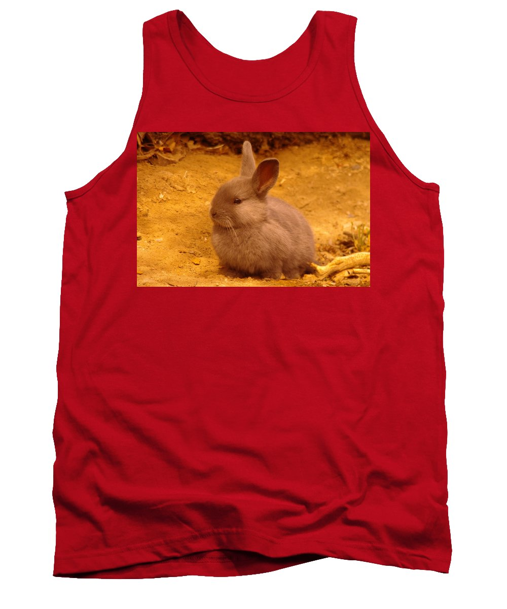 Rabbits Tank Top featuring the photograph A Little Bunny by Jeff Swan