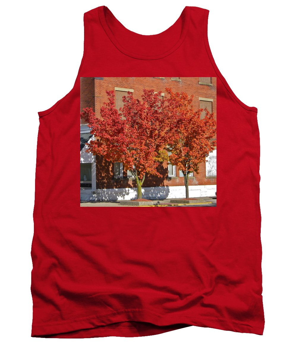 Tree Tank Top featuring the photograph Autumn Glory by Denise Mazzocco