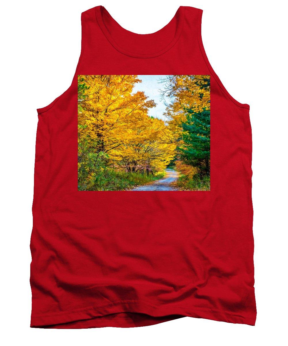 Wood Tank Top featuring the photograph Autumn Hike - Paint by Steve Harrington