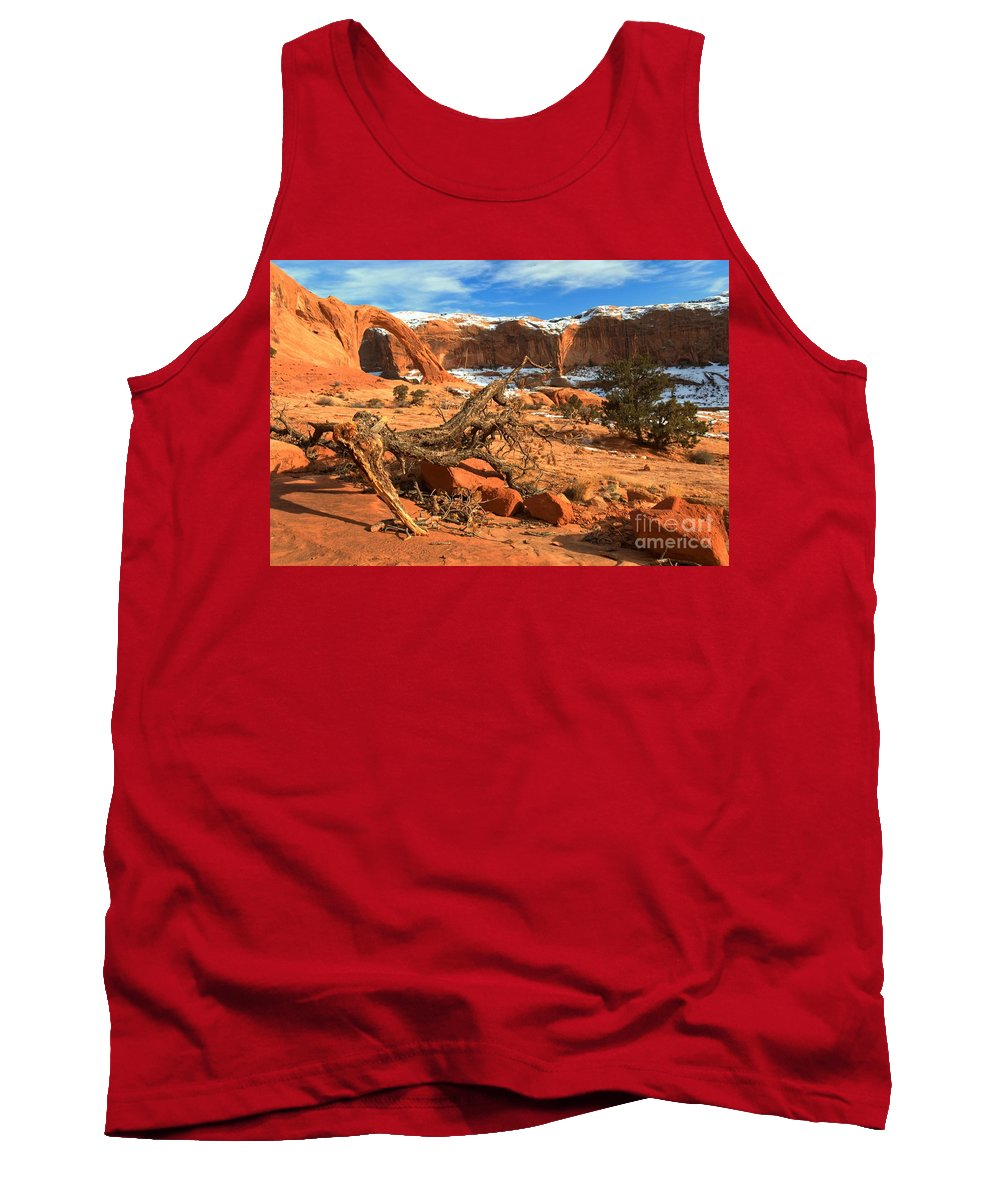 Coronoa Arch Tank Top featuring the photograph Corona Canyon by Adam Jewell