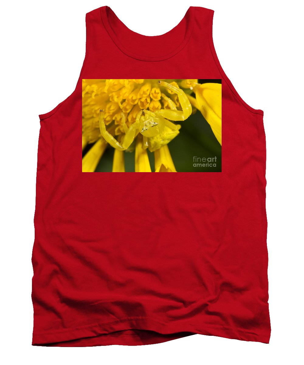 Animal Tank Top featuring the photograph Crab Spider by BG Thomson