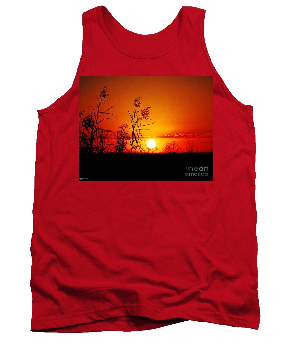 Louisiana Tank Top featuring the photograph Creole Trail Sunset by Lizi Beard-Ward