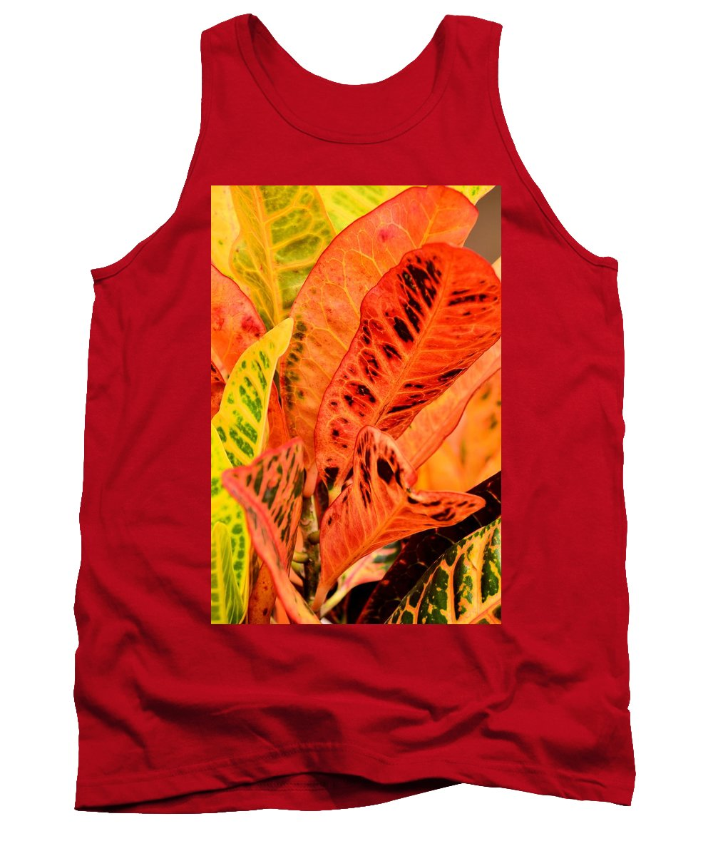 Croton's Many Colors Tank Top featuring the photograph Croton's Many Colors by Maria Urso