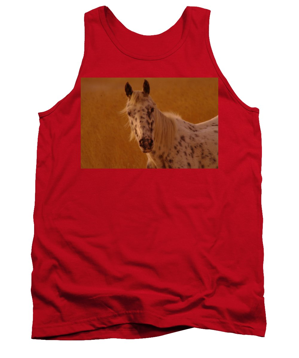 Horses Tank Top featuring the photograph Curious Pony With Spots by Jeff Swan