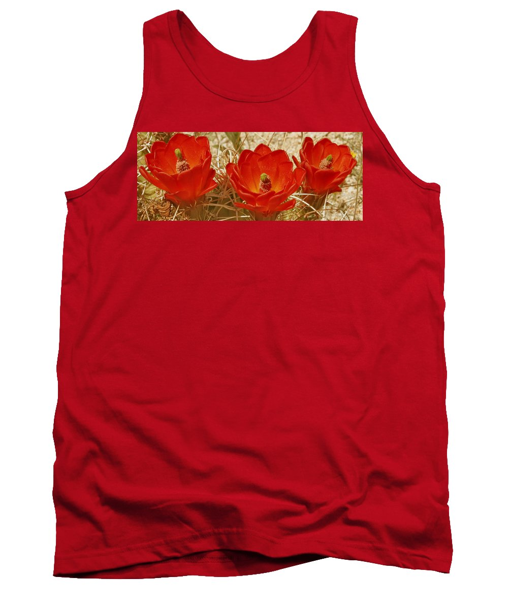 Red Cactus Flower Tank Top featuring the photograph Desert Blooms by Ben and Raisa Gertsberg
