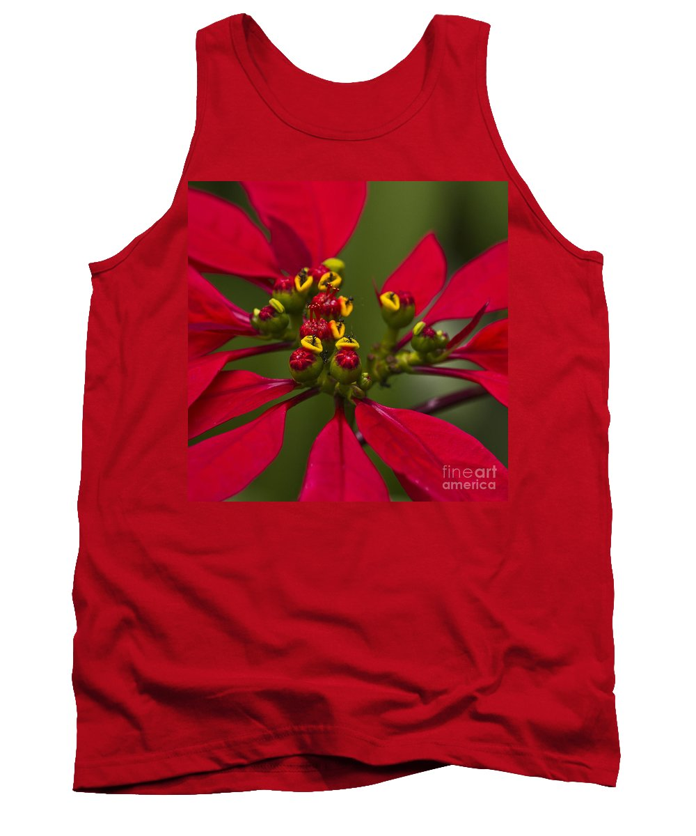 Heiko Tank Top featuring the photograph Emmets Home by Heiko Koehrer-Wagner