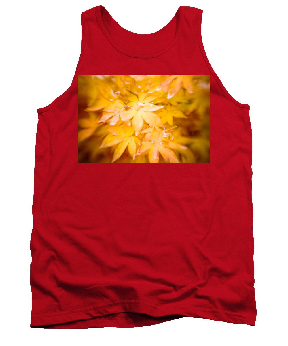 Color Tank Top featuring the photograph Fall Colors 6664 by Timothy Bischoff