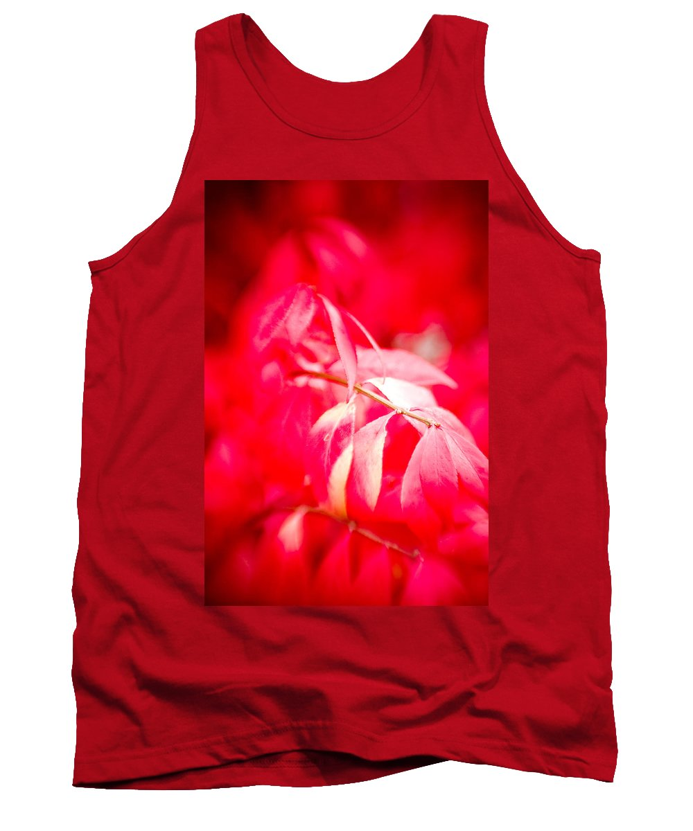 Color Tank Top featuring the photograph Fall Colors 6669 by Timothy Bischoff