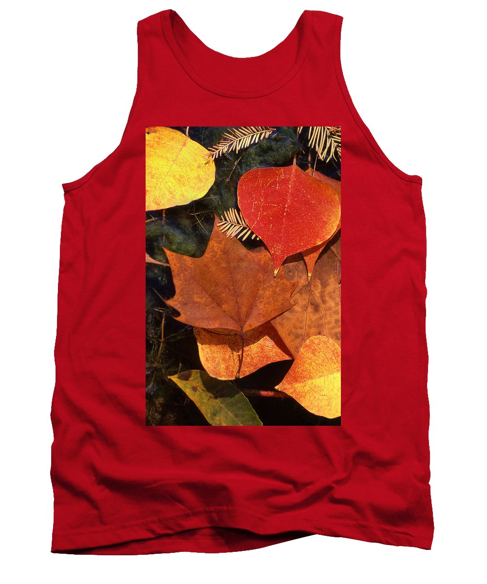 Leaves Tank Top featuring the photograph Fall Leaves I I by Jim Smith