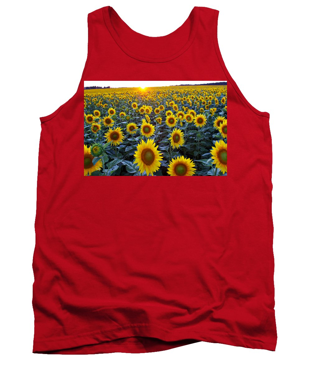 Color Images Tank Top featuring the photograph Field Of Sunflowers by Ian Taylor