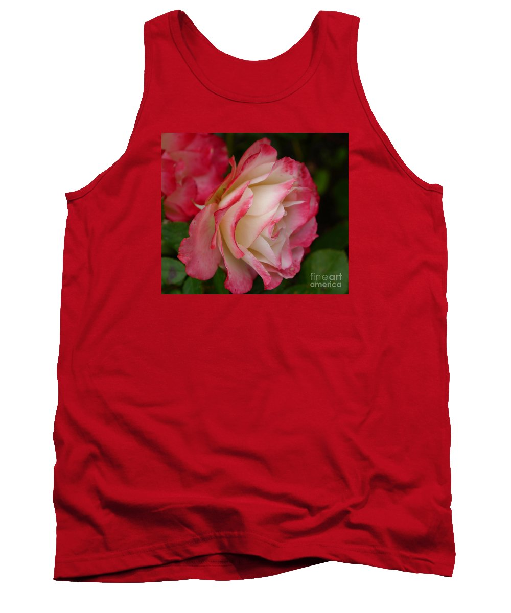 Rose Tank Top featuring the photograph Frosted Rose by Christiane Schulze Art And Photography