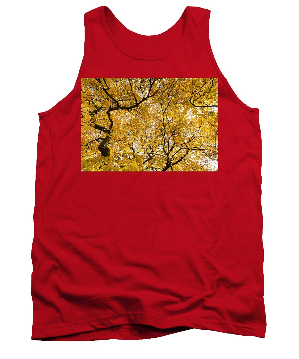 Yellow Leaves Tank Top featuring the photograph Full Yellow by Maj Seda