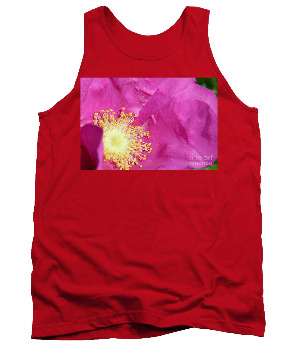Rose Tank Top featuring the photograph Inside by Christiane Schulze Art And Photography