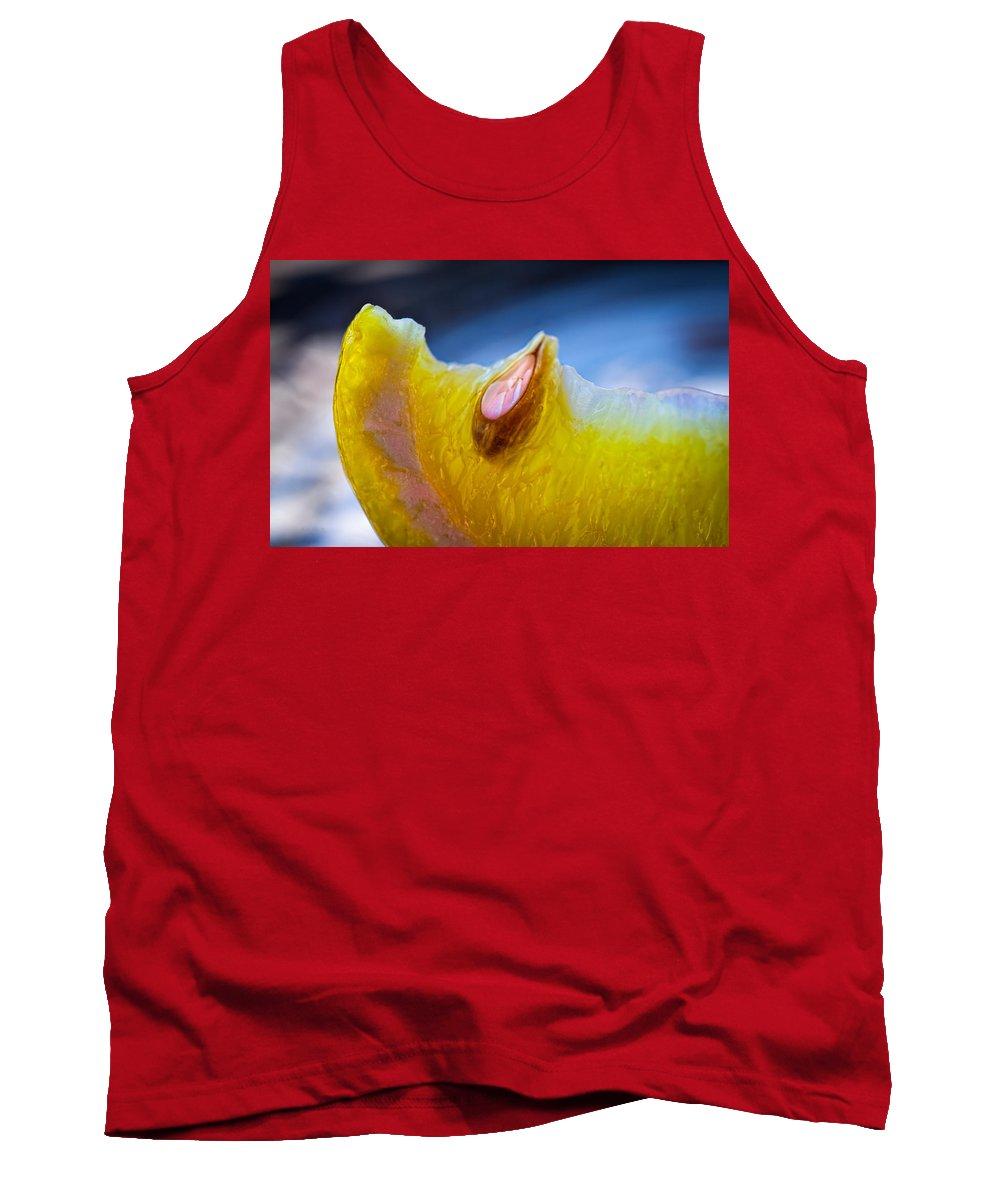 Lemon Tank Top featuring the photograph Lemon Seed by Bob Orsillo