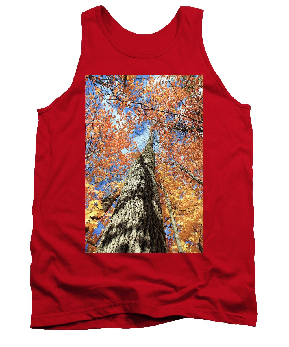 Nature Tank Top featuring the photograph Nature In Art by Mark Ashkenazi
