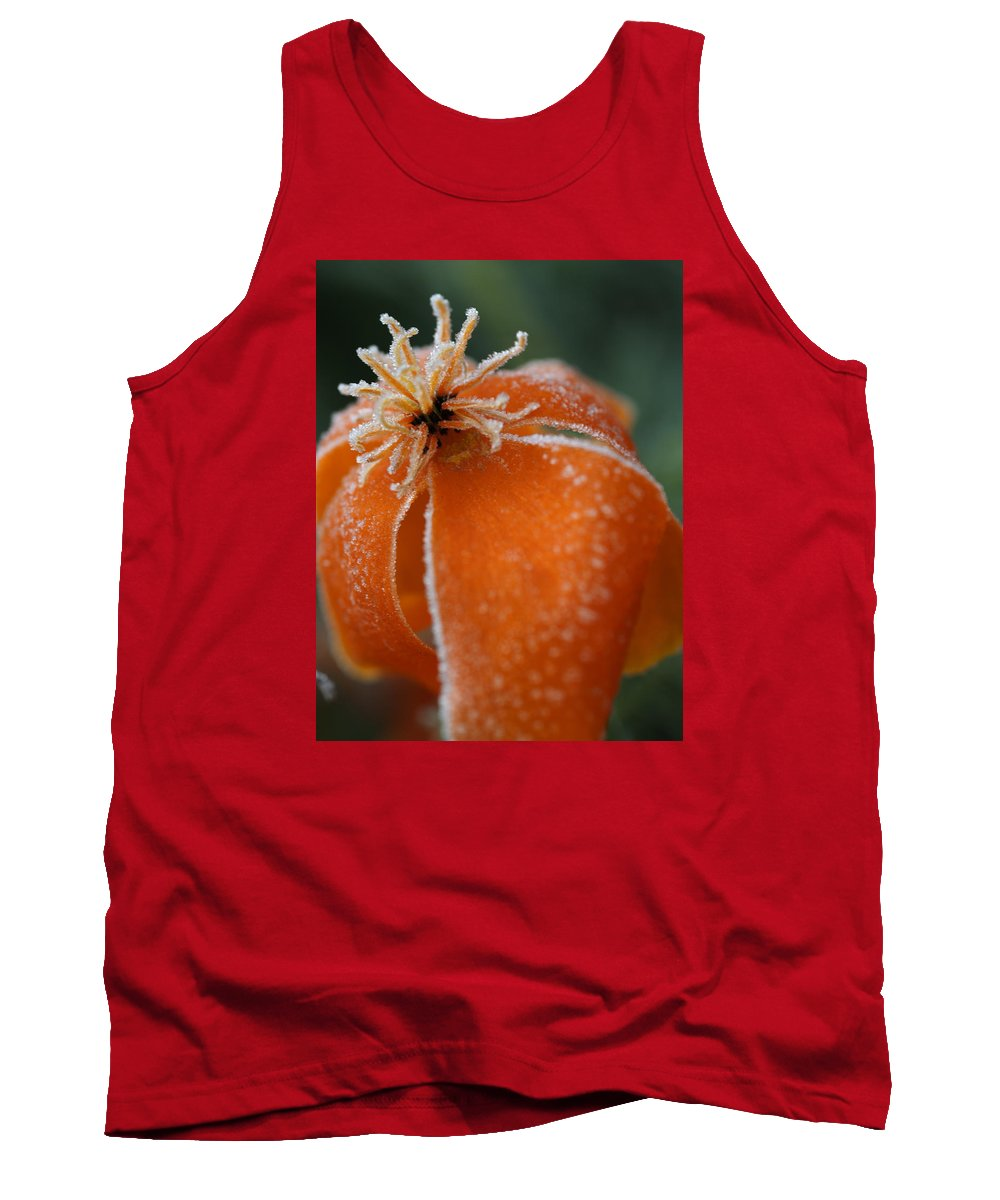 Frost Tank Top featuring the photograph Natures Frost by Miguel Winterpacht