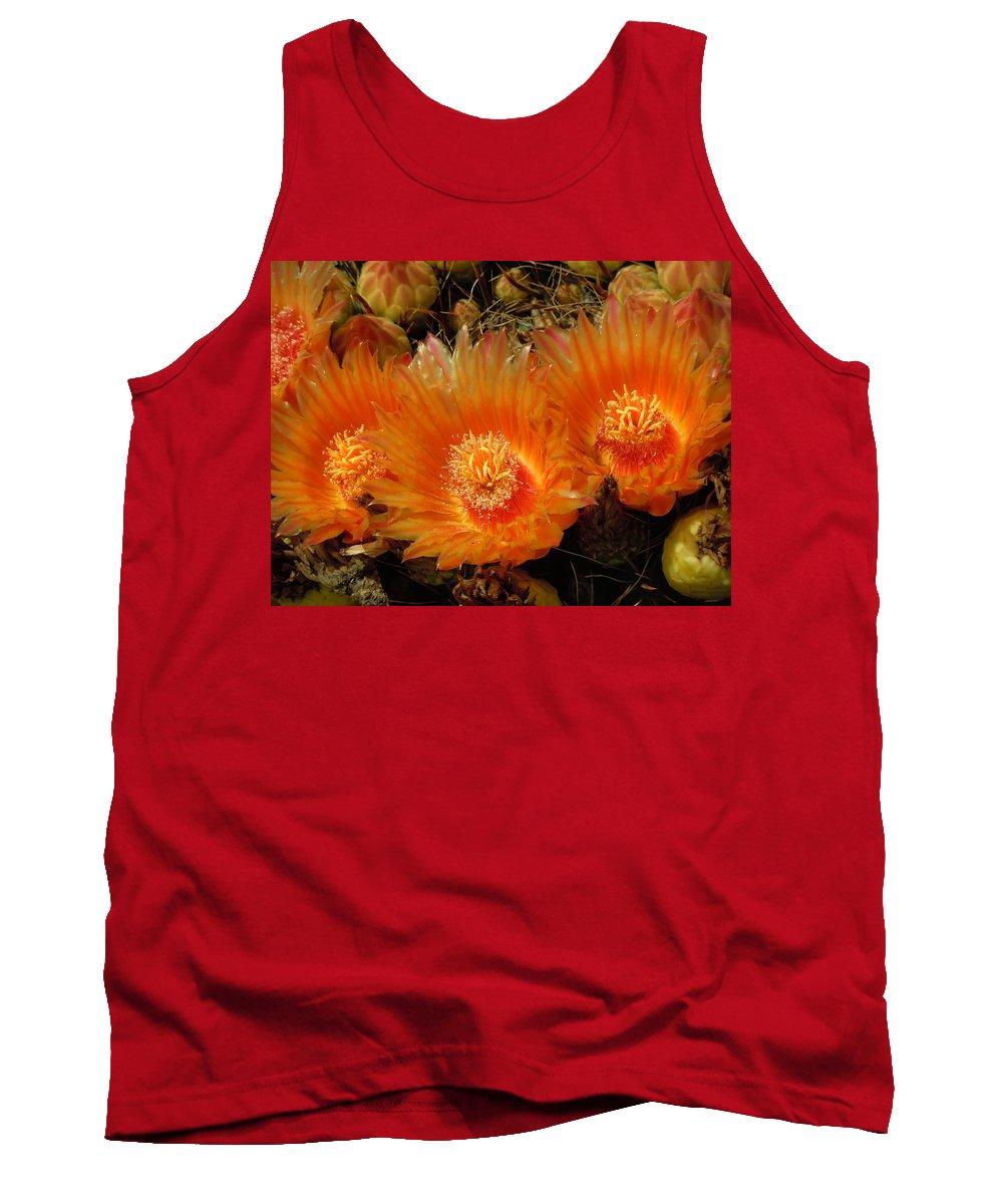 Heather Coen Tank Top featuring the photograph Orange Cactus by Heather Coen