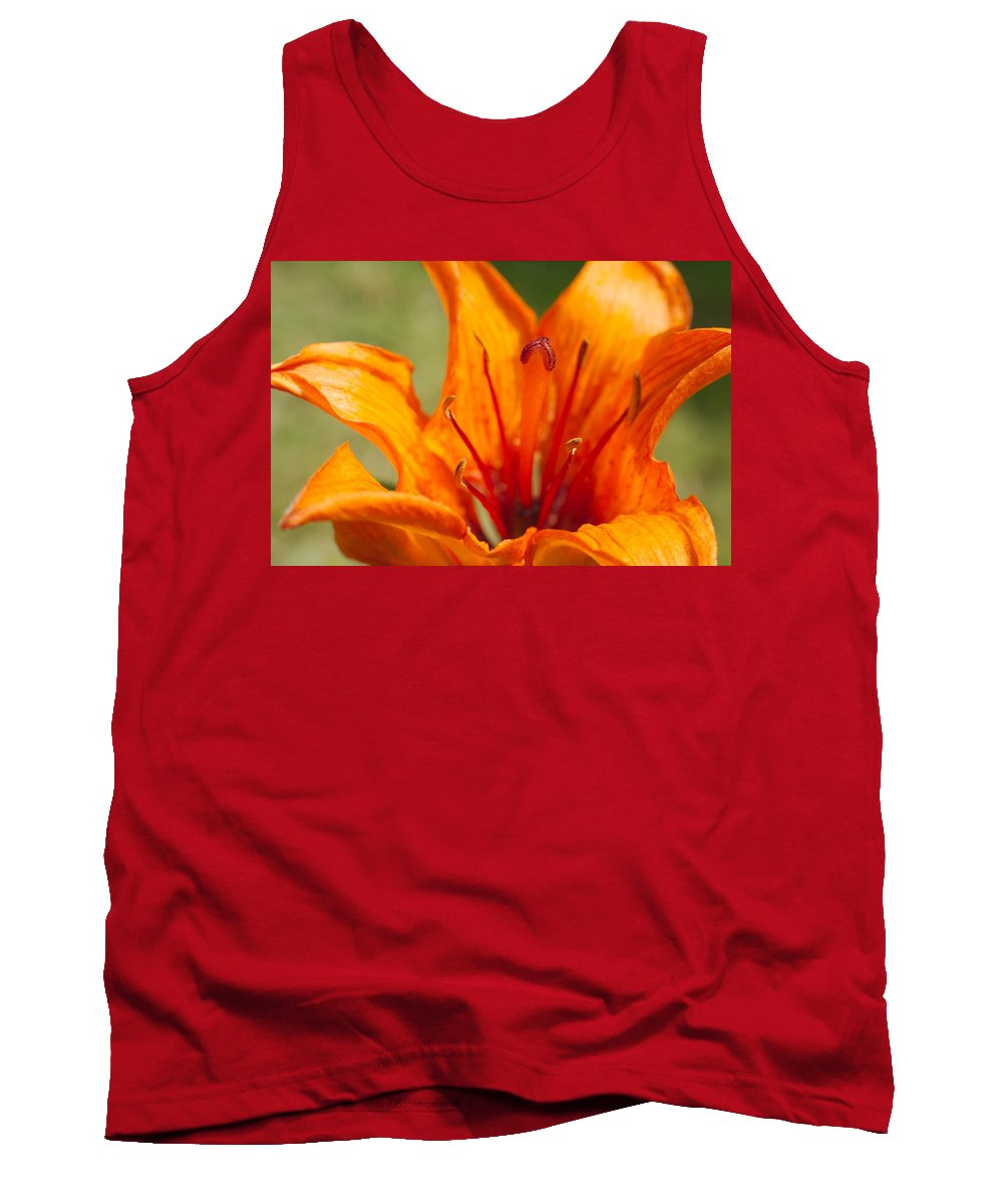 Background Tank Top featuring the photograph Orange Daylily Closeup by Ferenc Kosa