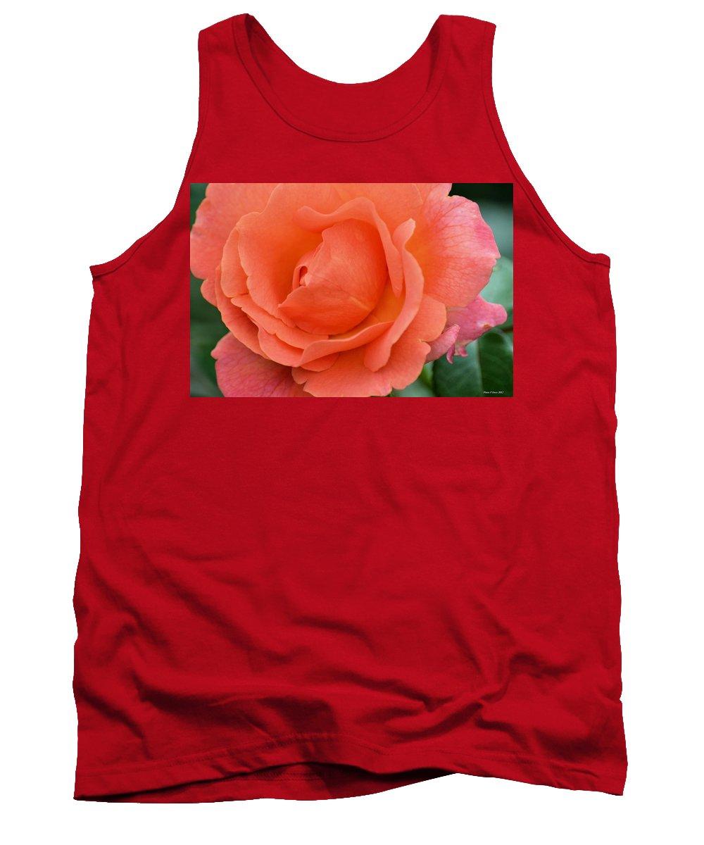 Peach Faced Rose Tank Top featuring the photograph Peach Faced Rose by Maria Urso