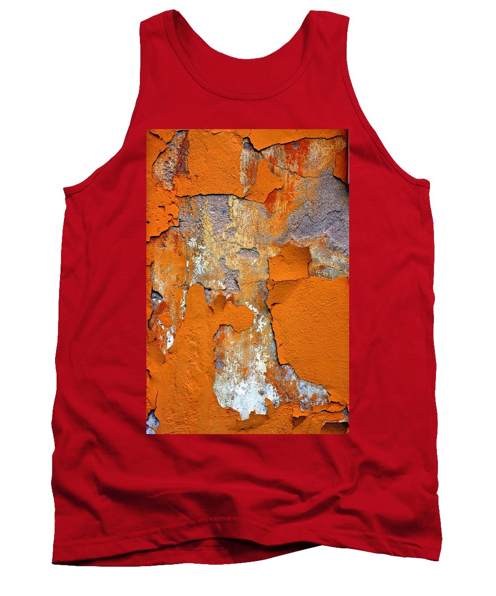 Marcia Lee Jones Tank Top featuring the photograph Pedimento by Marcia Lee Jones