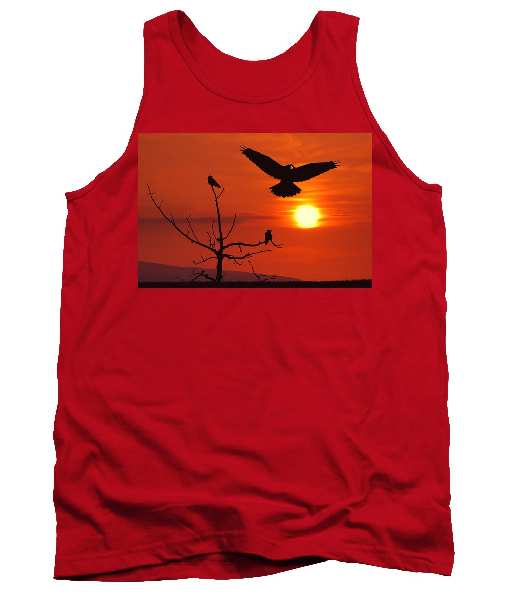 Nature Tank Top featuring the photograph Raven Maniac by Ron Day