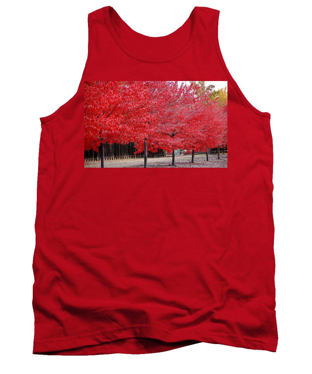 Red Leaves Leaf Tree Fall Colors Row Line Chico Ca Tank Top featuring the photograph Red Tree Line by Holly Blunkall