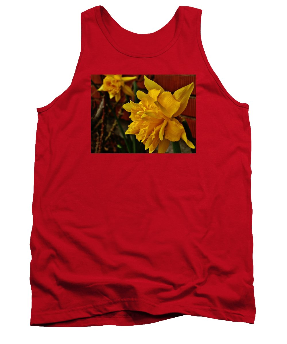 Flower Tank Top featuring the photograph Renaissance Daffodil by VLee Watson