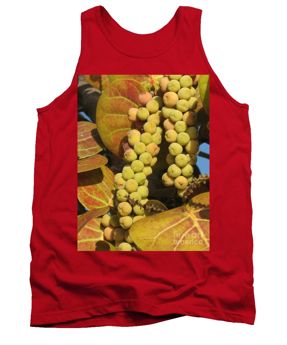 Seagrapes Tank Top featuring the photograph Ripe Seagrapes by Christiane Schulze Art And Photography