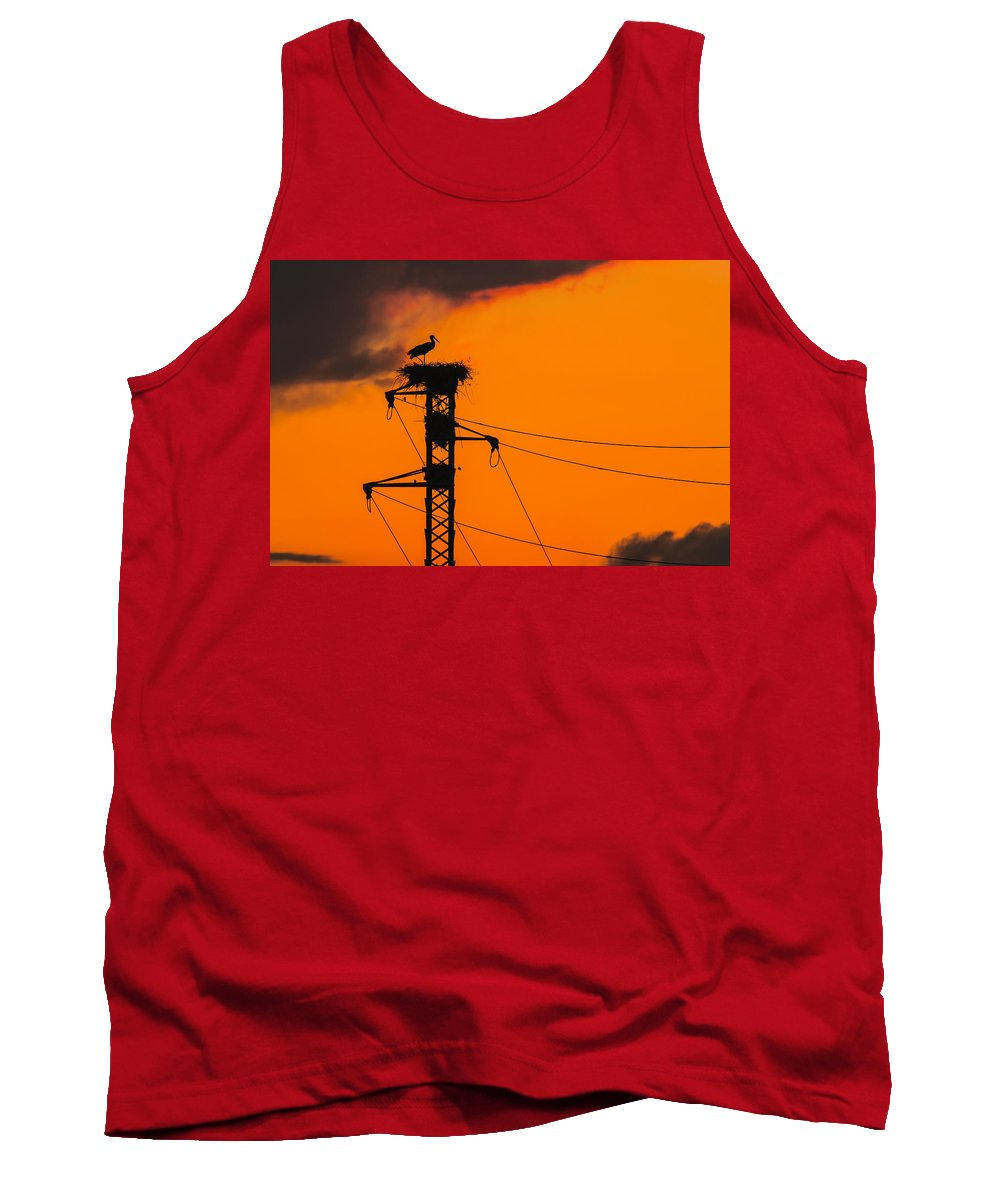 Stork Tank Top featuring the photograph Stork At Sunset by Alfio Finocchiaro