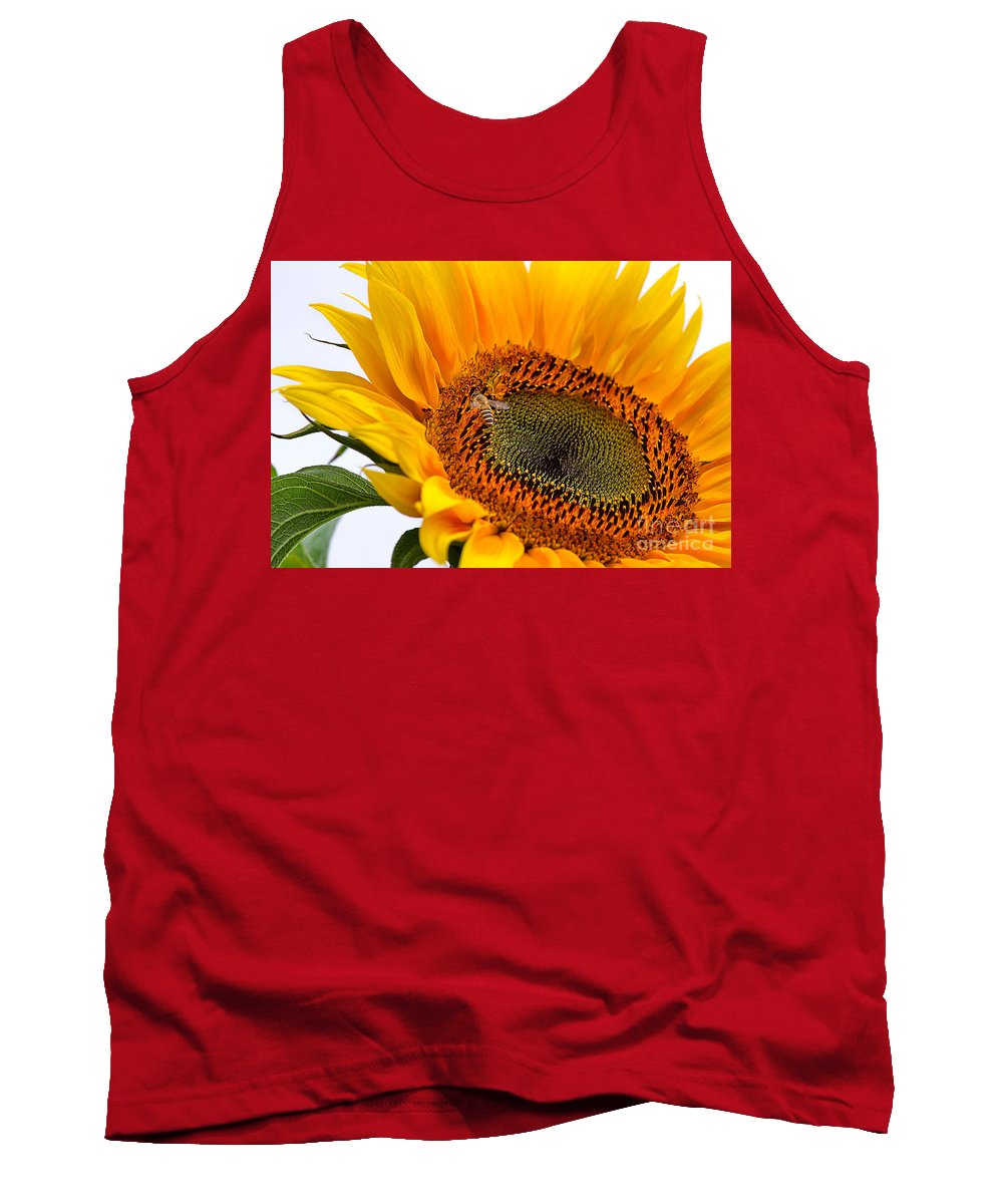 Nature Tank Top featuring the photograph Sunflower by Louise Heusinkveld