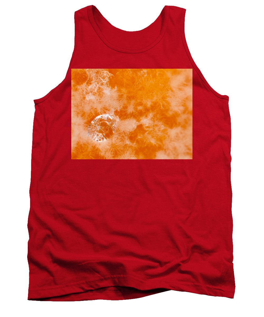 Orange Tank Top featuring the photograph Orange 2 by Jeffery Ball