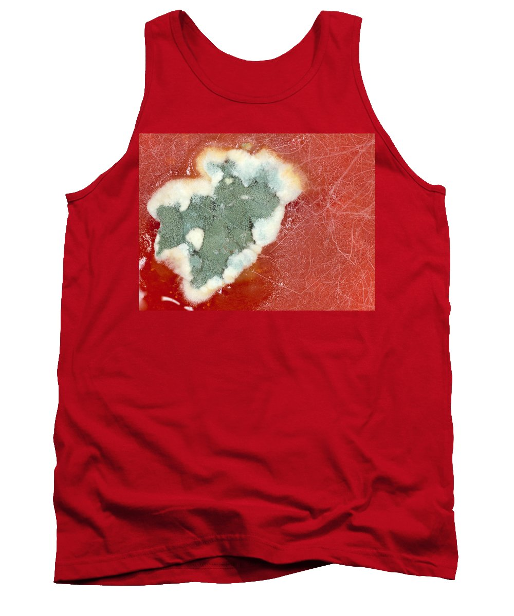 Tomato Tank Top featuring the photograph Tomato Juice 2 by Jeffery Ball