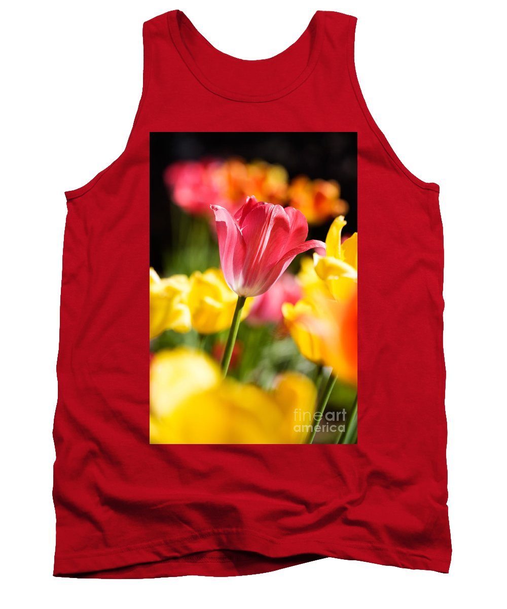 Backdrop Tank Top featuring the photograph Tulips by Kati Finell