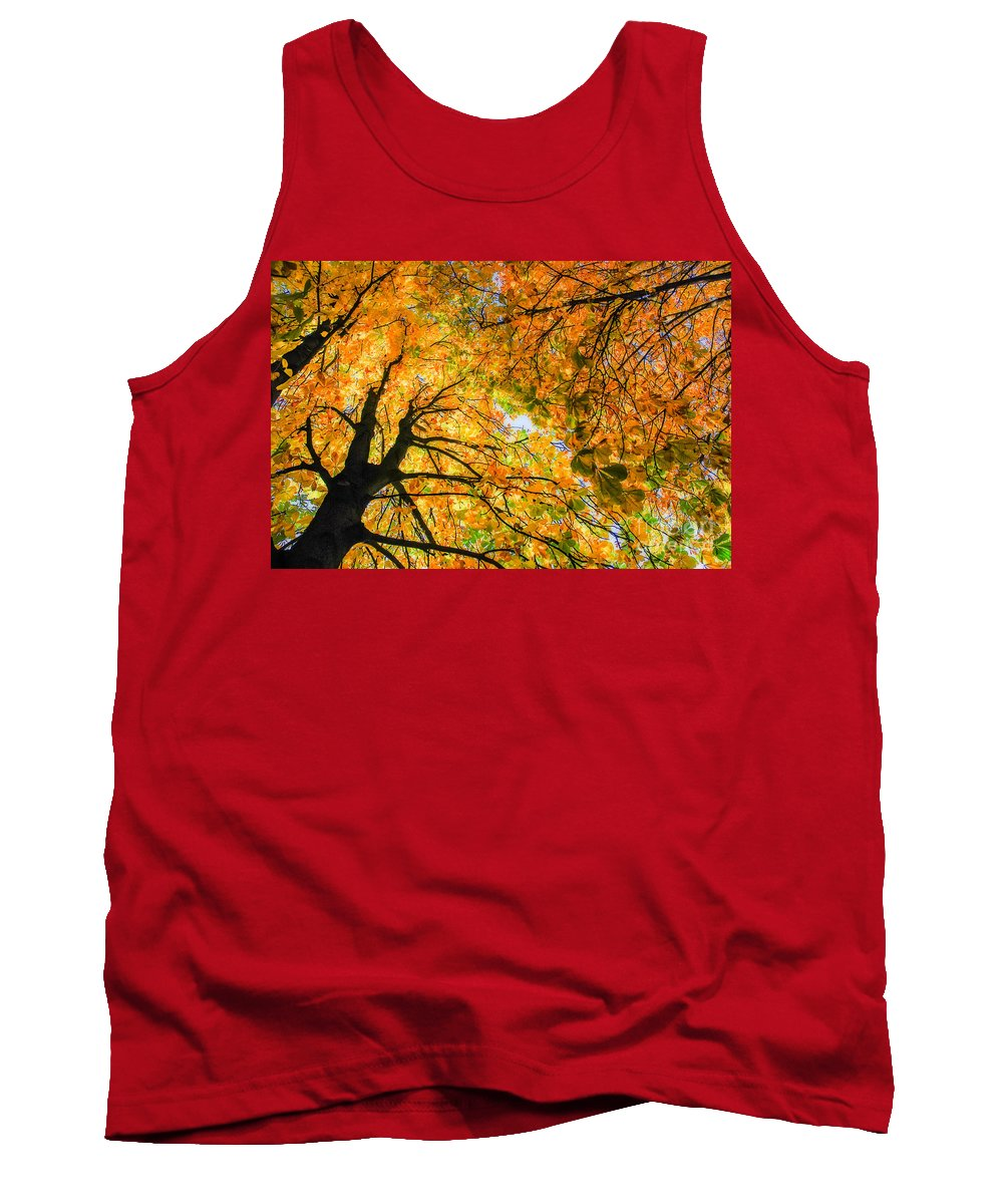 Orange Tank Top featuring the photograph Autumn Sky by Hannes Cmarits