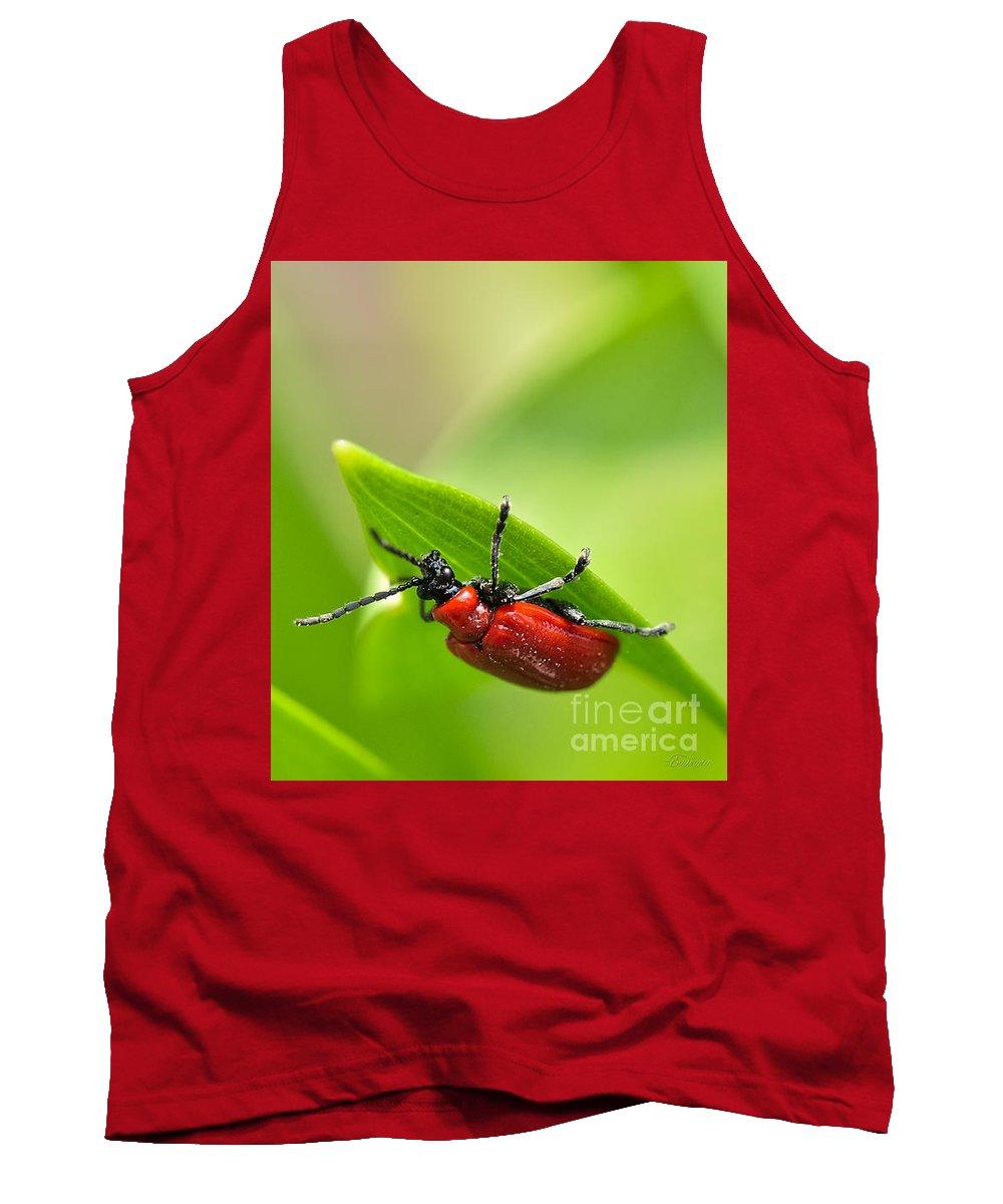 Beetle.red Beetle Tank Top featuring the photograph Beetle by Evmeniya Stankova