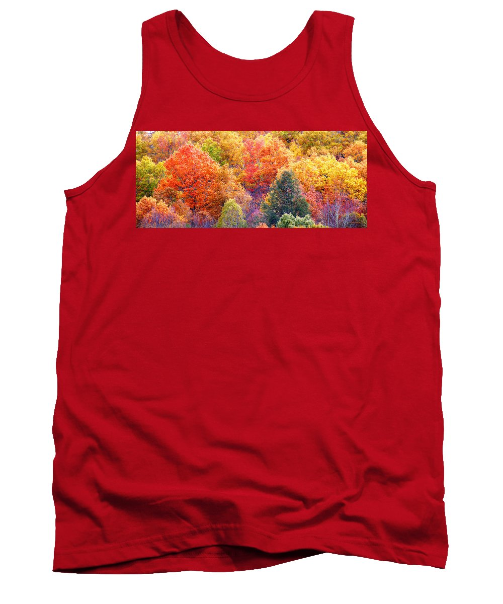 Fall Tank Top featuring the photograph Fall Trees 3 by Duane McCullough